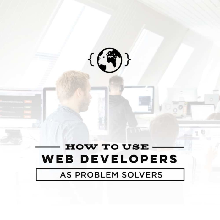 How to Use Web Developers as Problem Solvers