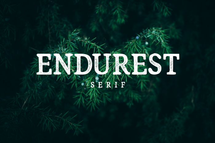 Endurest Typeface - Hipster Font