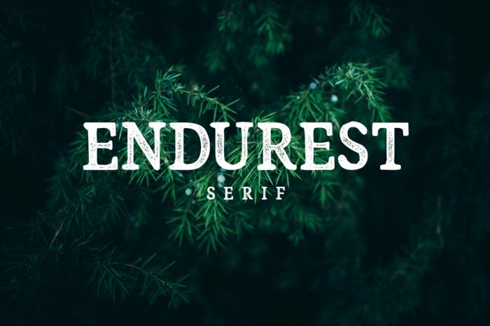 Endurest Typeface - Hipster Font