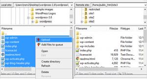 WordPress site file