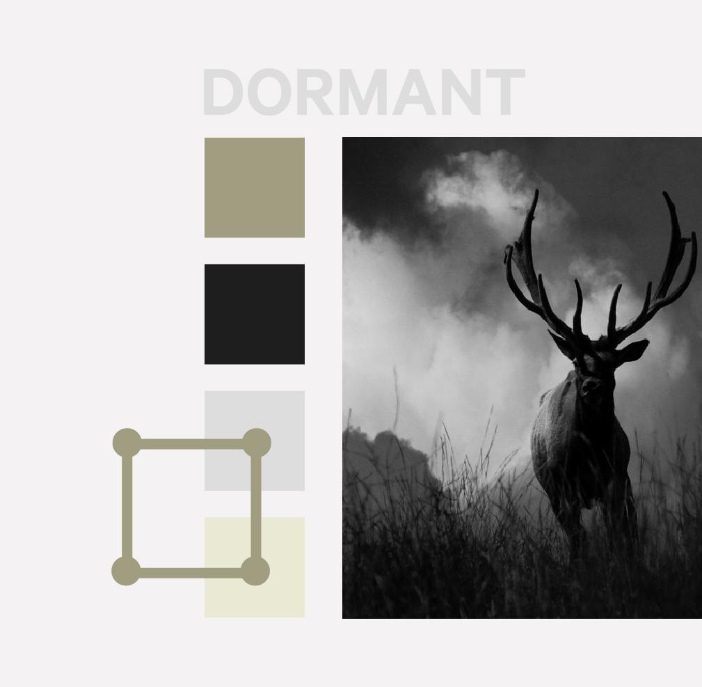 Dormant - Color schemes for men, mens color preferences