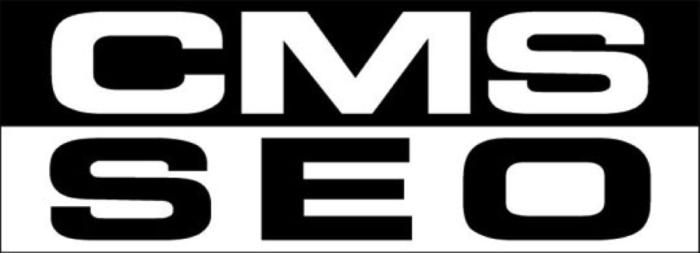 CMS for SEO