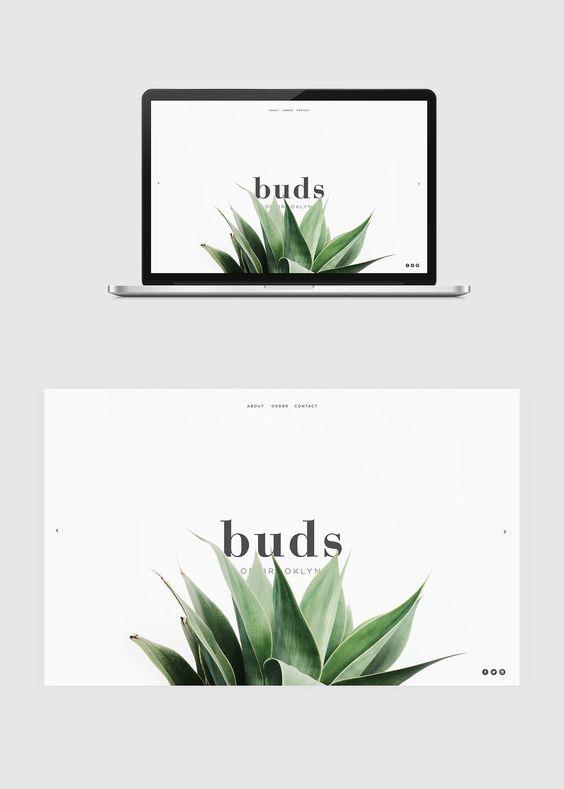 Web Color Scheme - Green, plant focused