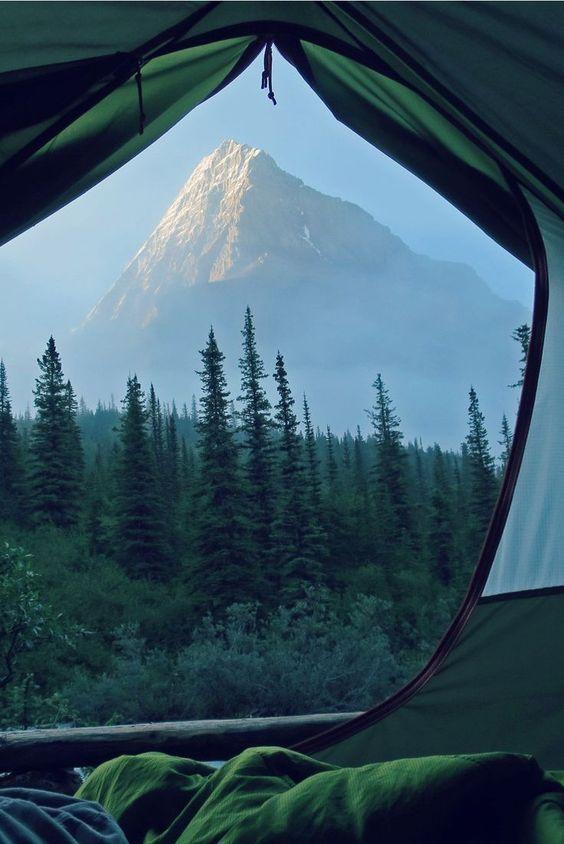 Camping Tent - Bored Art