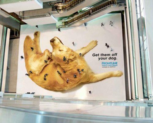 Frontline Dog Flees - Guerilla Marketing