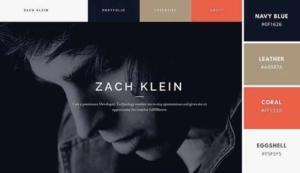 Luxury web design color palettes