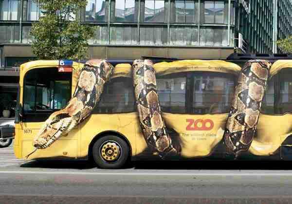 Snake - Zoo Guerilla marketing on Bus