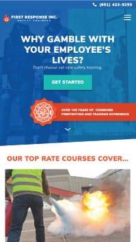 Minneapolis Web Design Examples