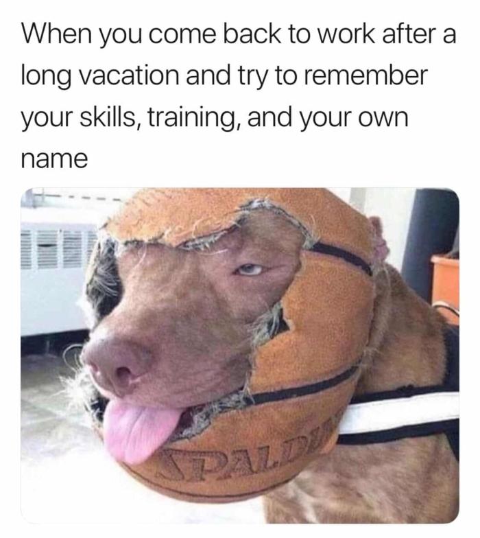 Long vacation, meme
