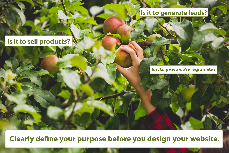 define website purpose